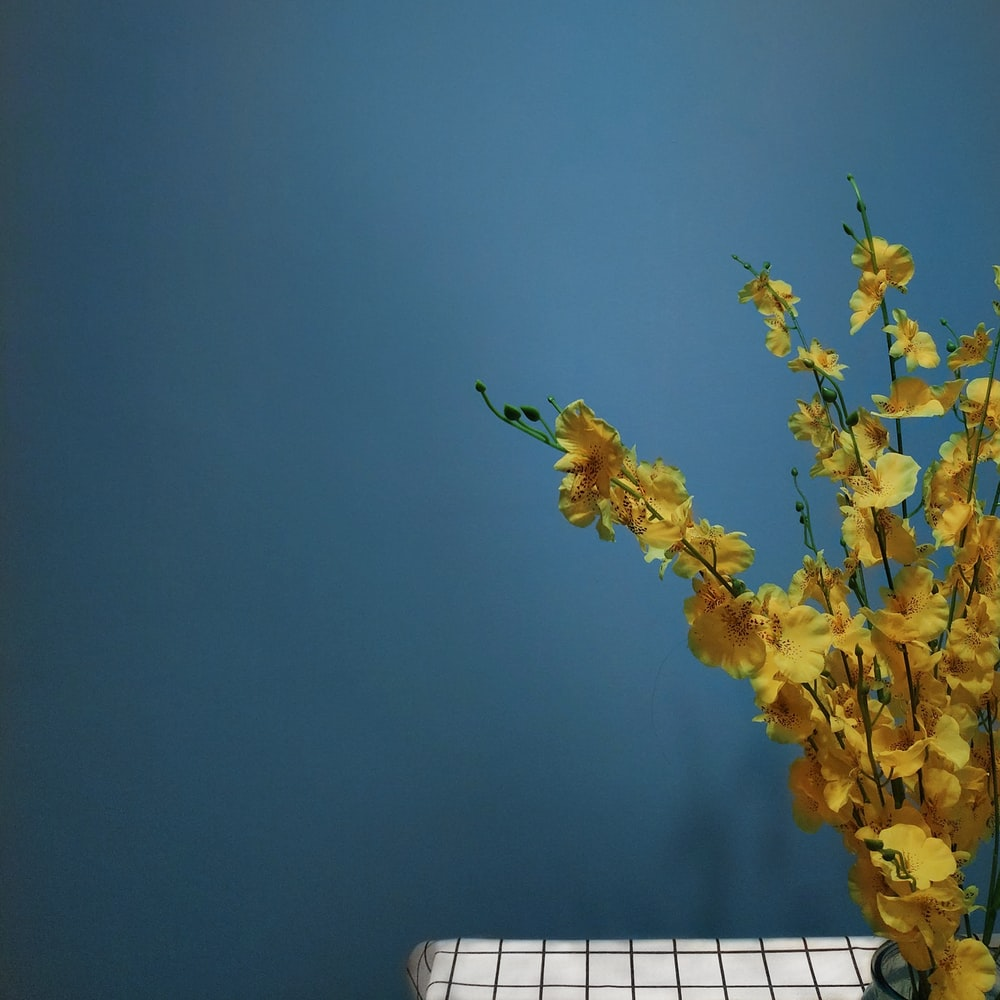 low-angle photography of yellow flowers during daytime