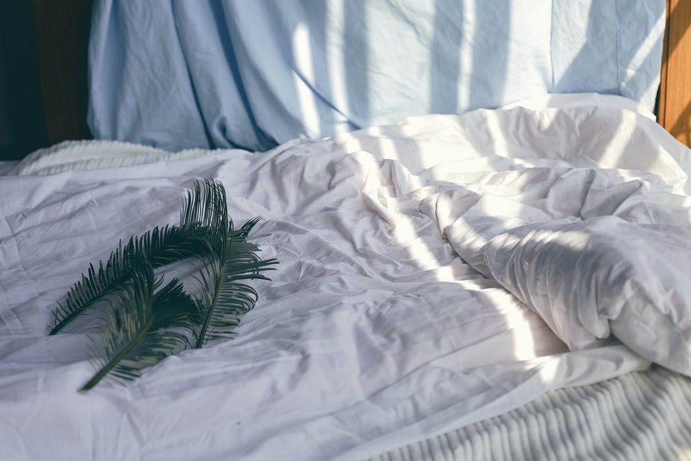 green leaves on white bedspread