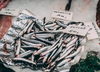 raw fish on white textile