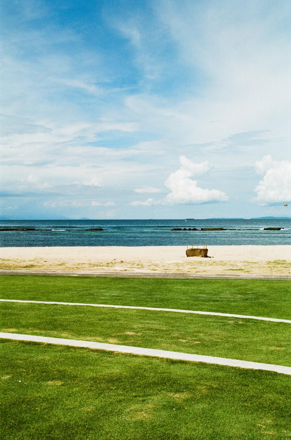 grass field near seashore