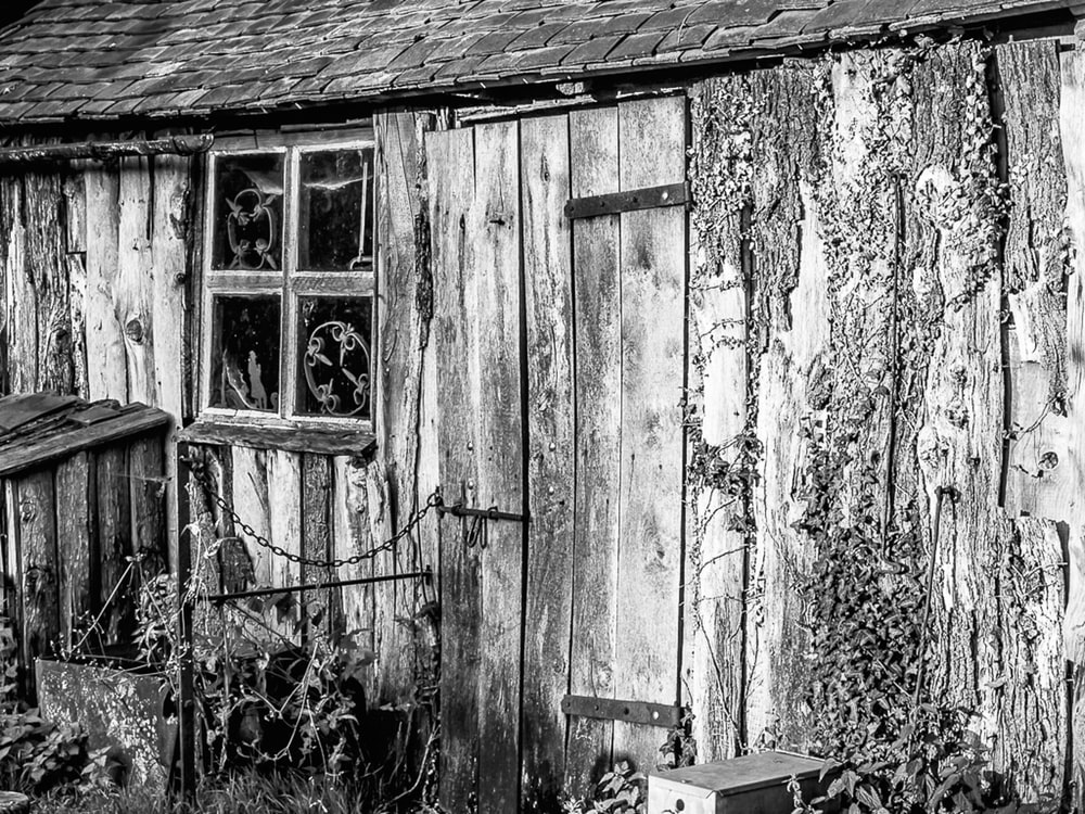 grayscale photography of a wooden shack