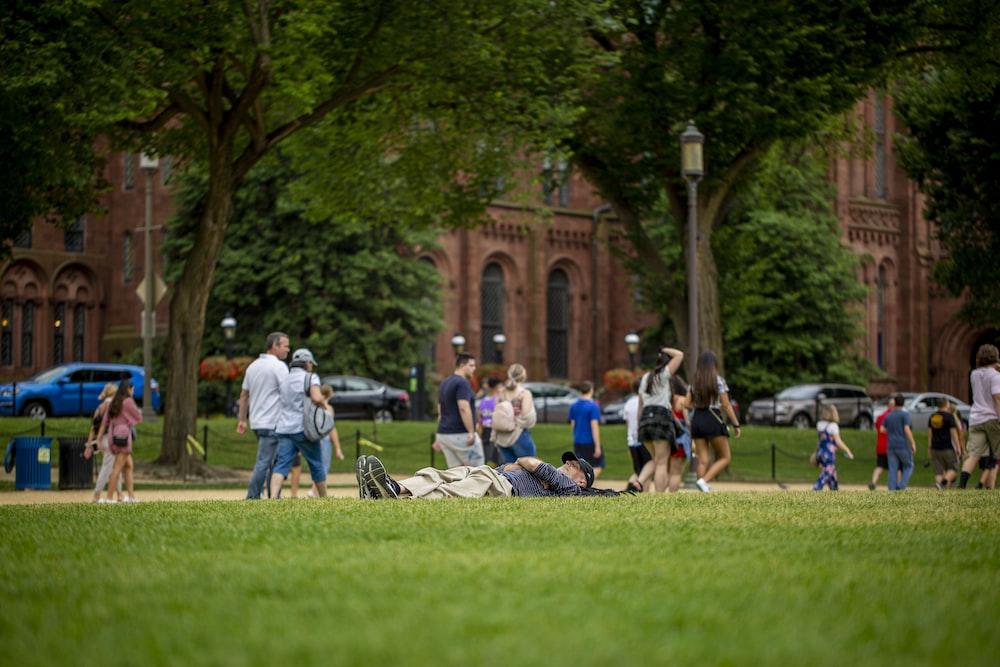people walking on grass field near trees