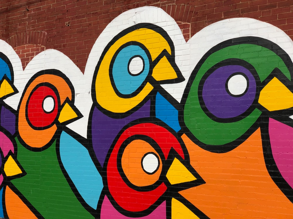 multicolored bird graffiti wall art