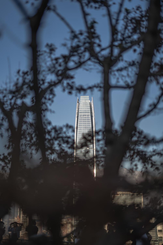 white concrete building through silhouette of trees