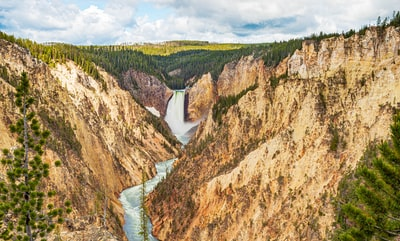 aerial view of green trees and cliff yellowstone zoom background