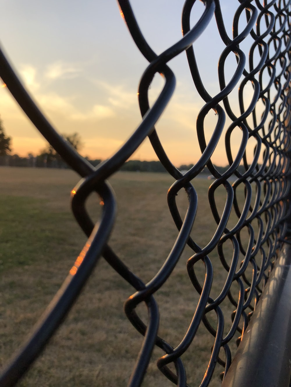 gray metal chain link fence viewing green round