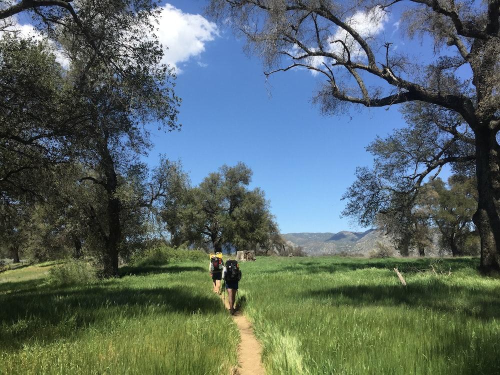 people walking on trail across grass field