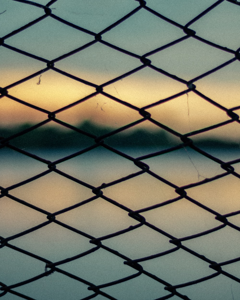 black metal wire fence close-up photography