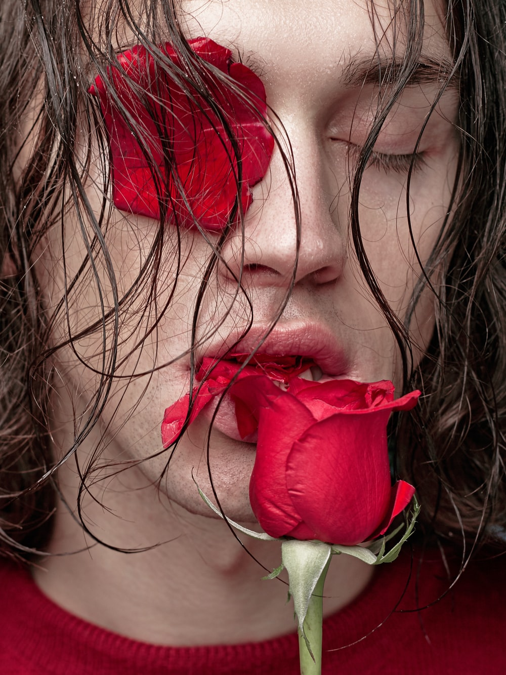 unknown person biting red rose flower