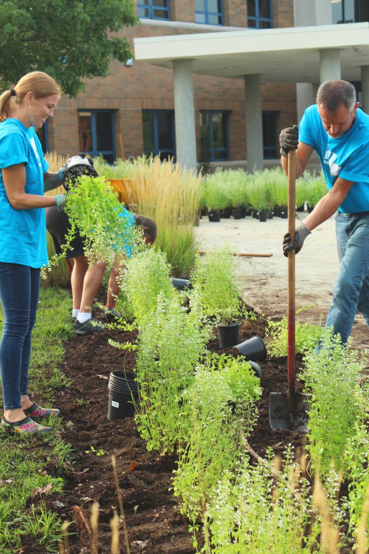 girl wearing blue shirt planting plants