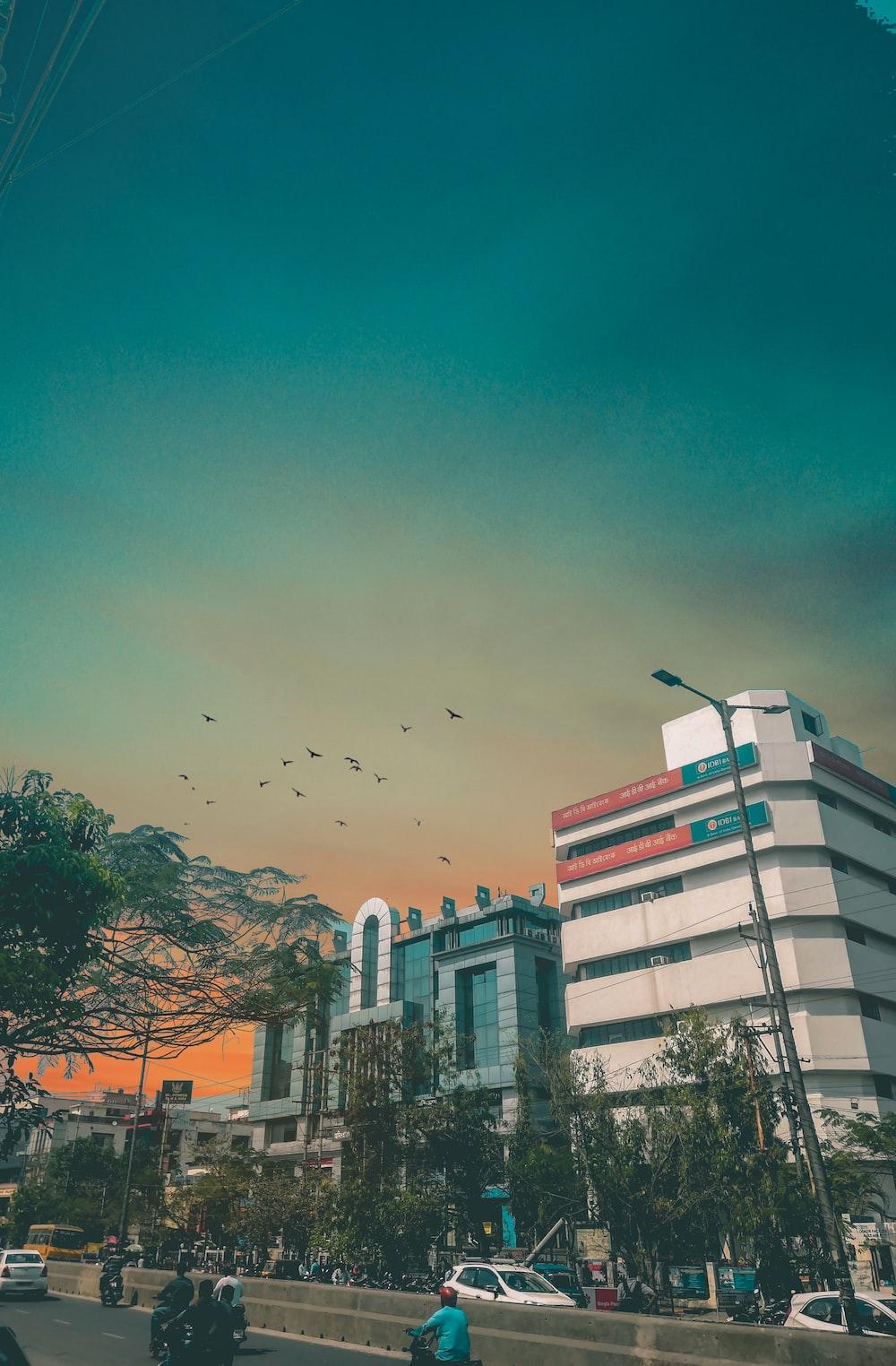 people on road under blue skies