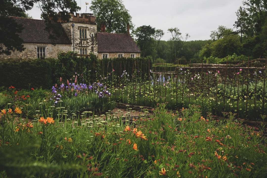 The cutting garden at Ightham mote.