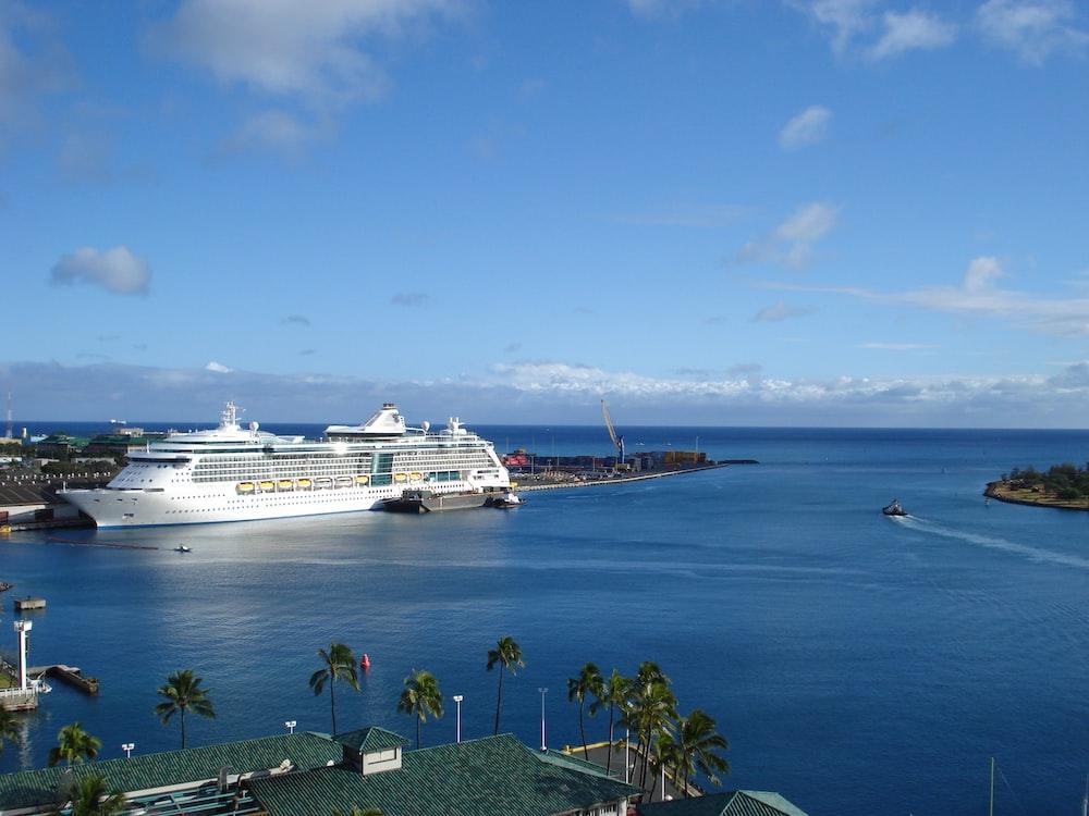 cruise ship docked near island