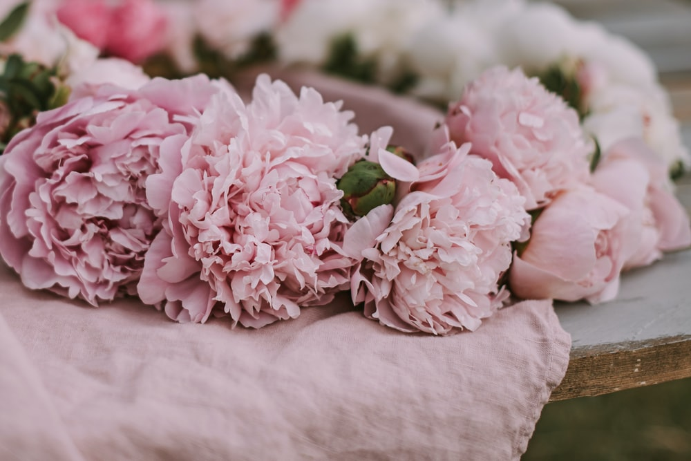 pink chrysanthemum bouquet