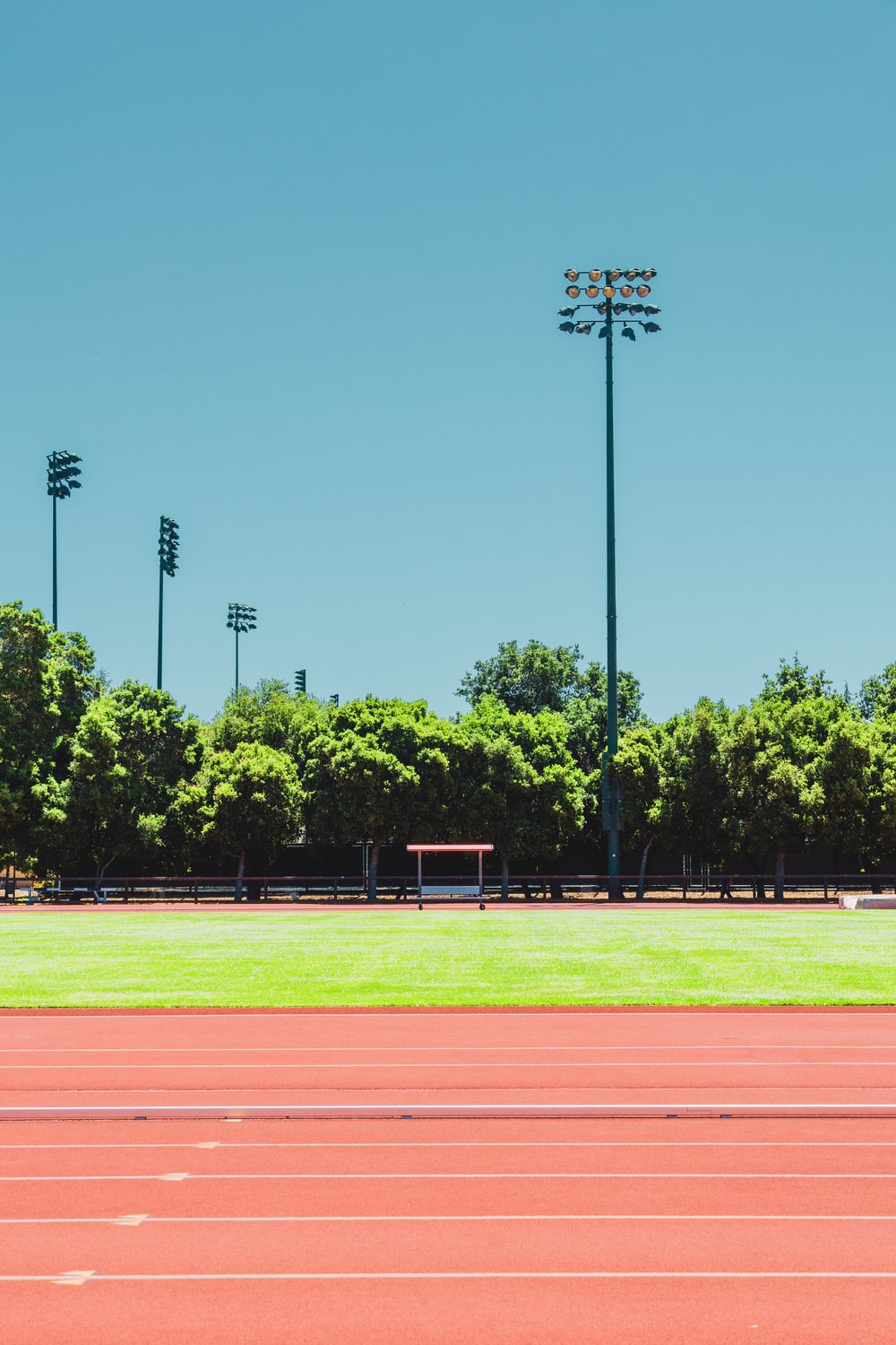 brown and green track field during daytime