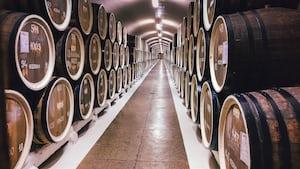 4713. Bor,szőlő, borászatok