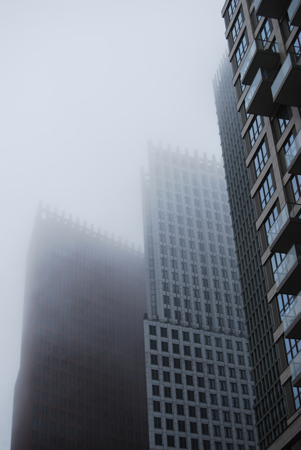 city with high-rise buildings during foggy season