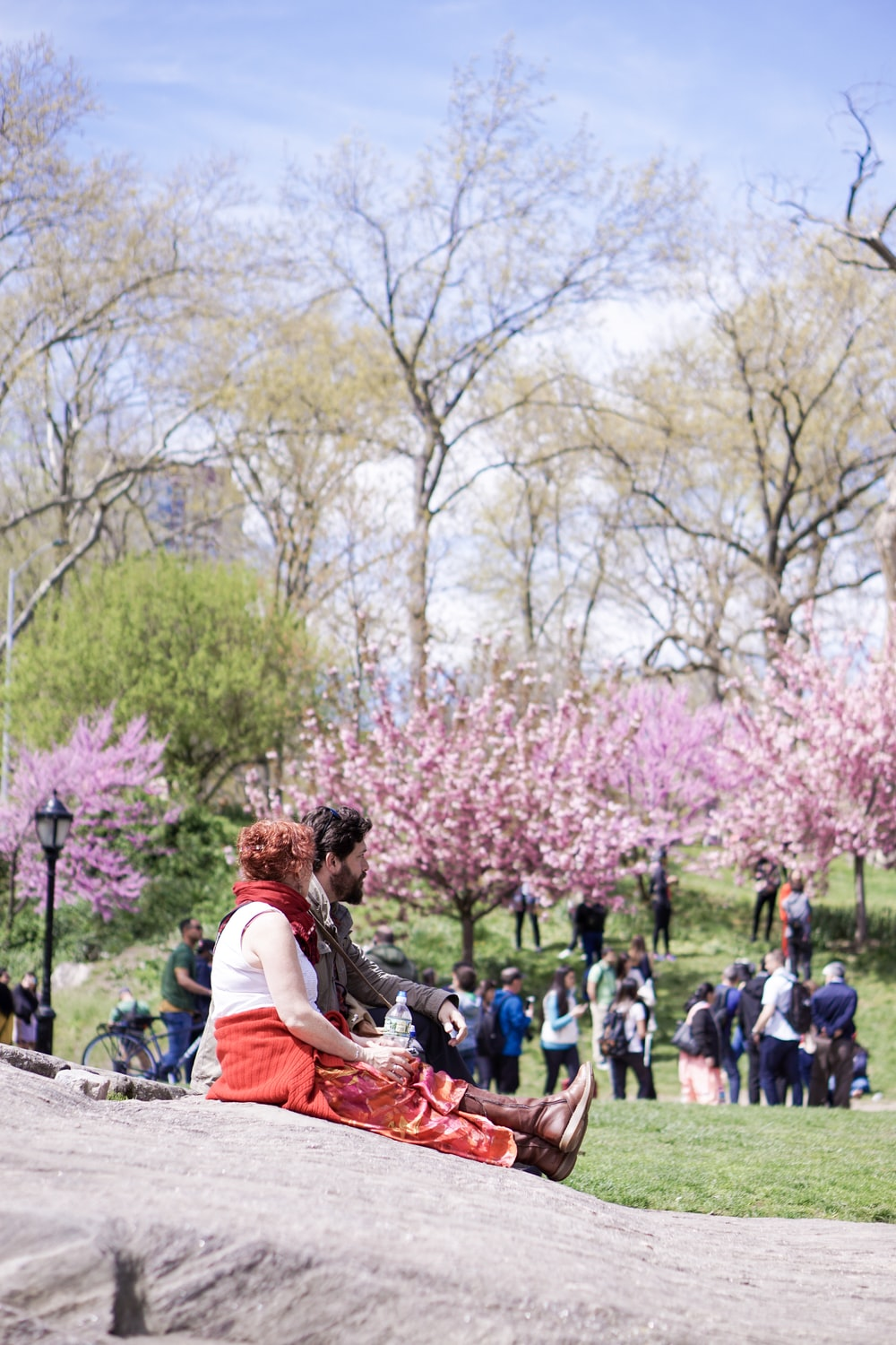 people standing and sitting near trees during daytime
