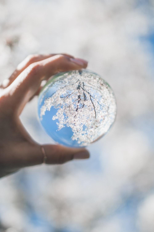 clear glass globe