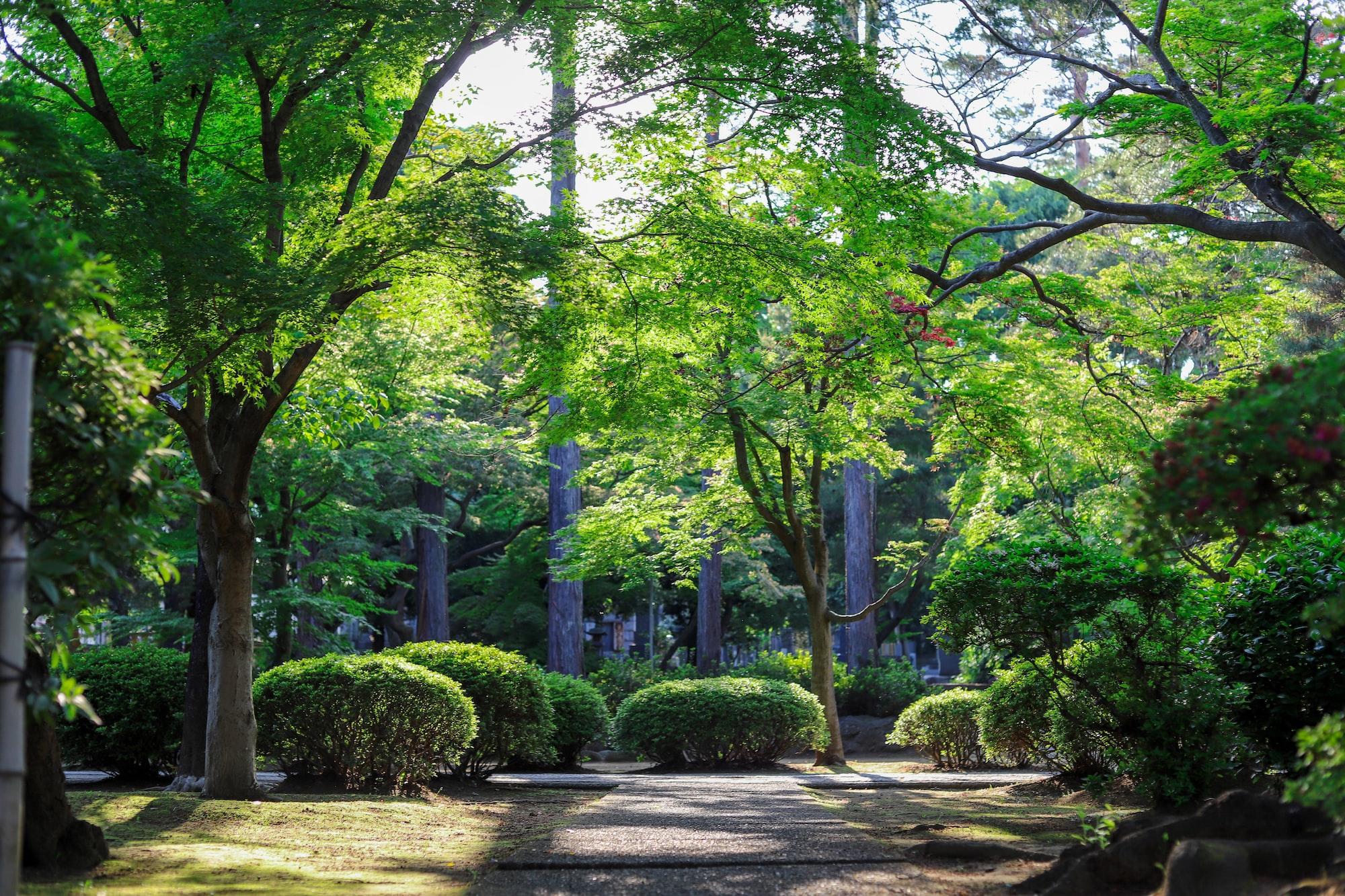 Heritage Garden Rechristened as Atal Bihari Vajpayee Udyan!