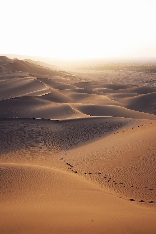 aerial photo of brown desert