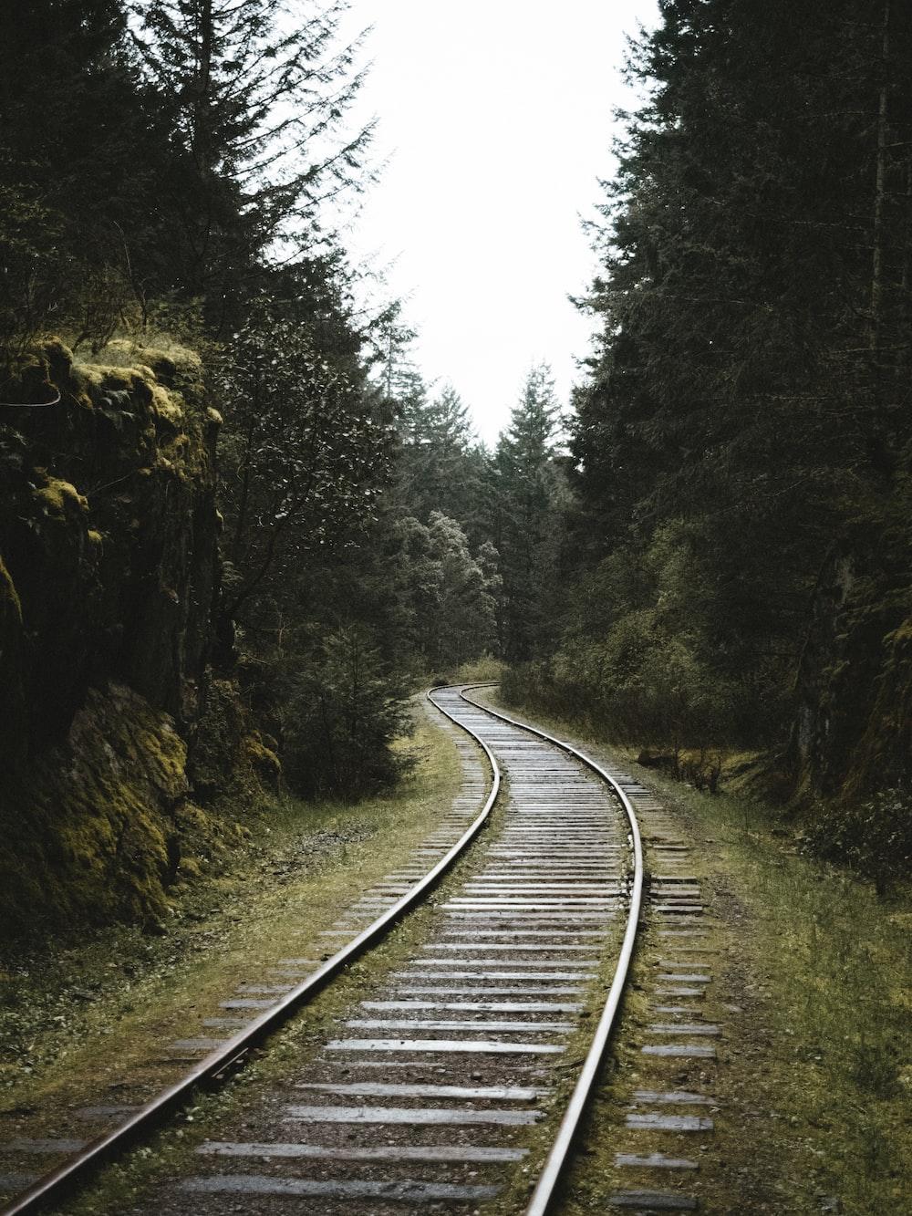 train rail scenery