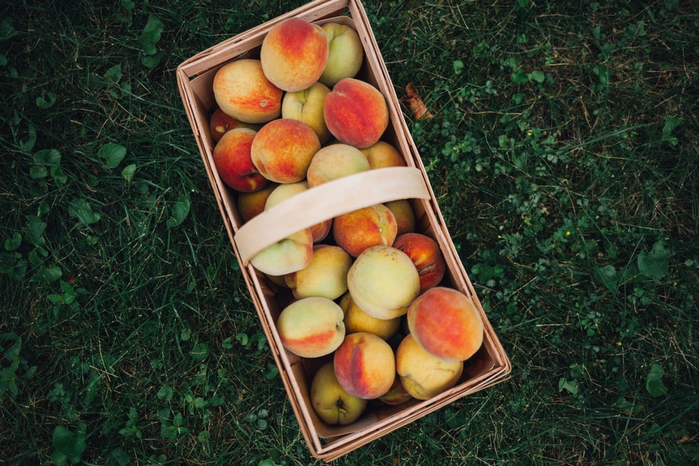 nectarines in brown basket