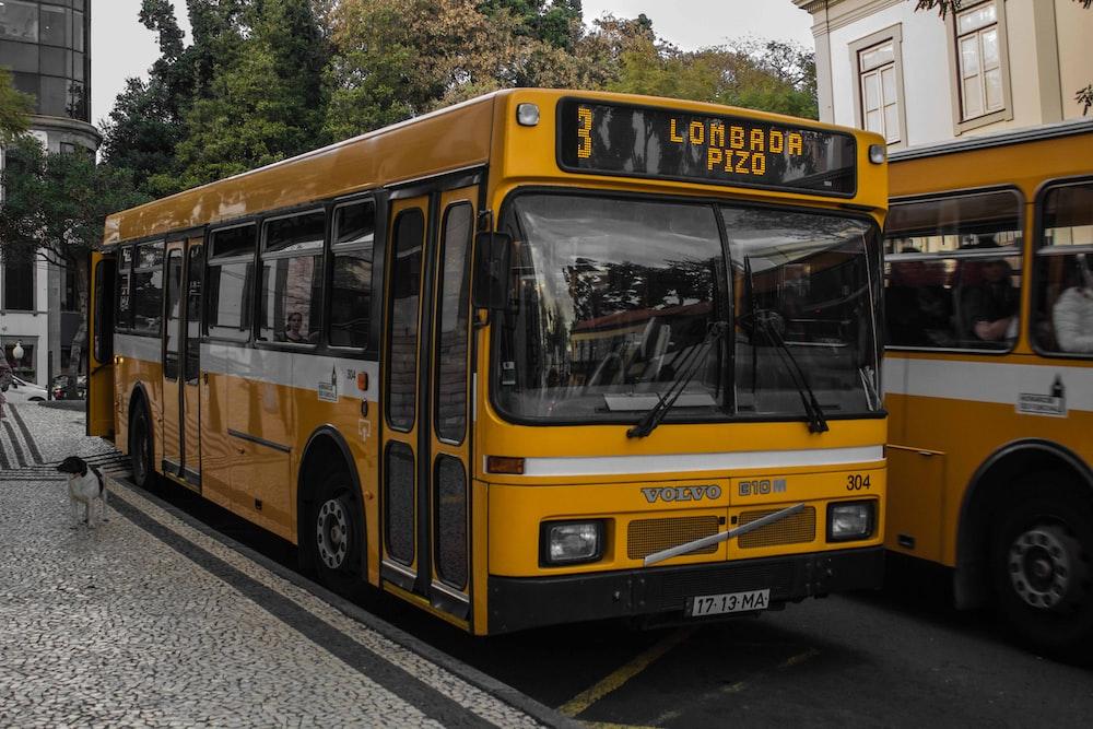 yellow Lombada Pizo bus