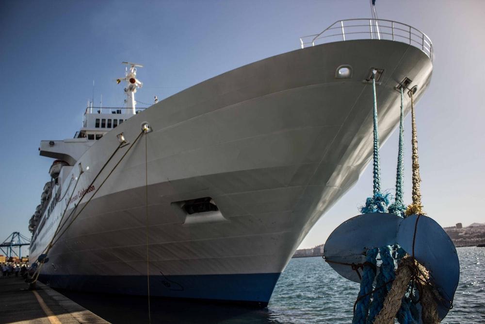 white and grey cruise ship during daytime