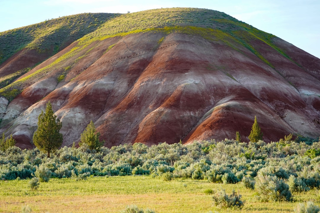 Photo number 5 from my series on the Painted Hills. This section of the Painted Hill Unit at the John Day Fossil Beds is often overlooked. There were 100 photographers at the main hills but I was the only one looking at this beauty. Those colors really appear in real life, especially in the evening. This smaller hill has beautiful bands of white and because of the time of year, a nice green layer of vegetation. Who knew nature was so sexy??