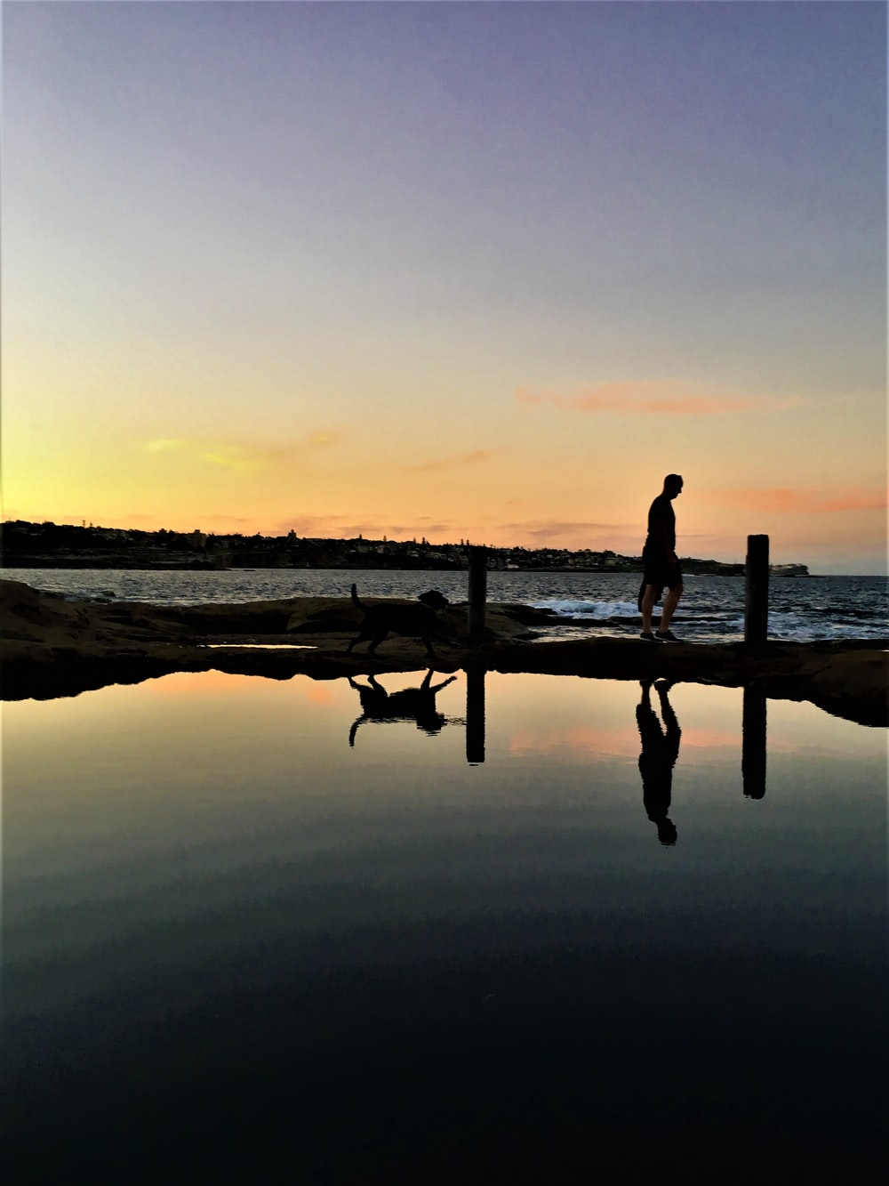 silhouette photography of person and dog beside body of water