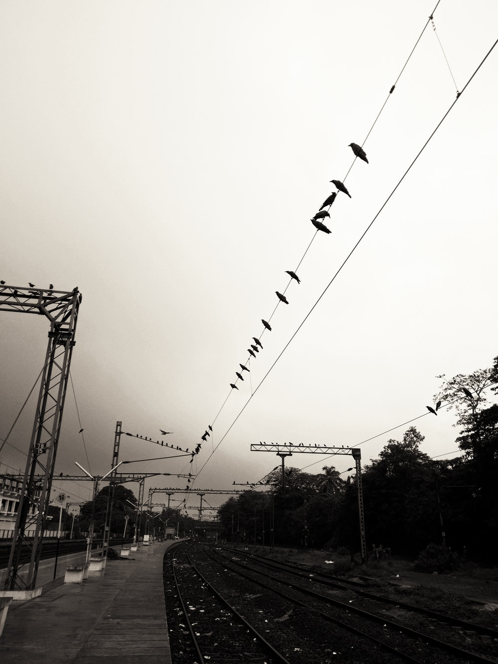 grayscale photography of train track