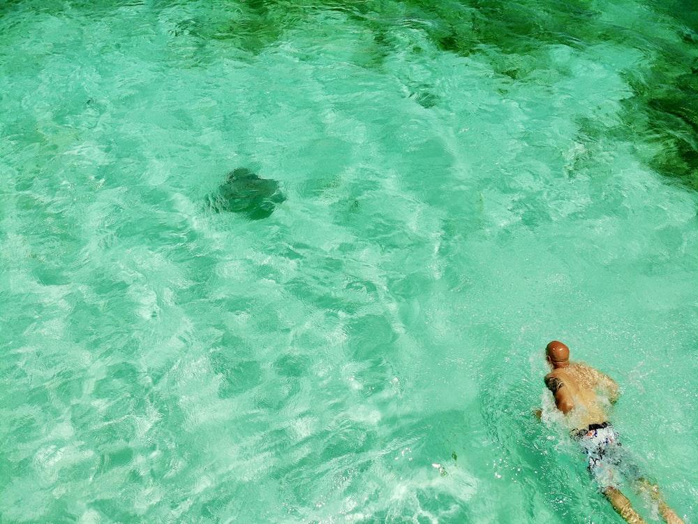 man swimming in a pool