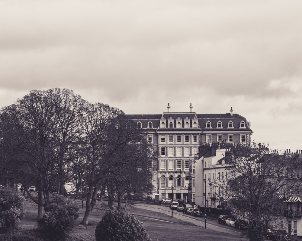 greyscale photograph of buildings and trees