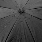 black umbrella, rain, peace, solitude, financial education Photo by Azhar on Unsplash