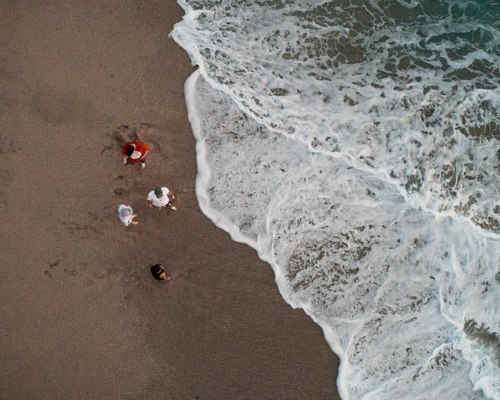 aerial view of people on seashore