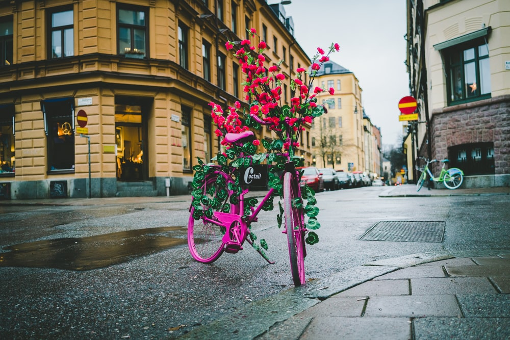 pink floral bike parked near building during daytime