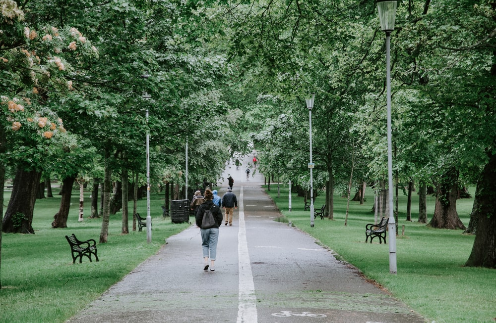 alley photography of people walking on road between green trees during daytime