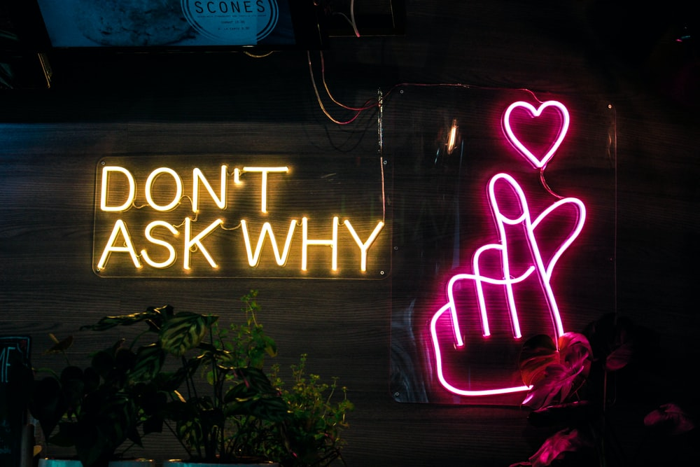 don't ask why neon sign