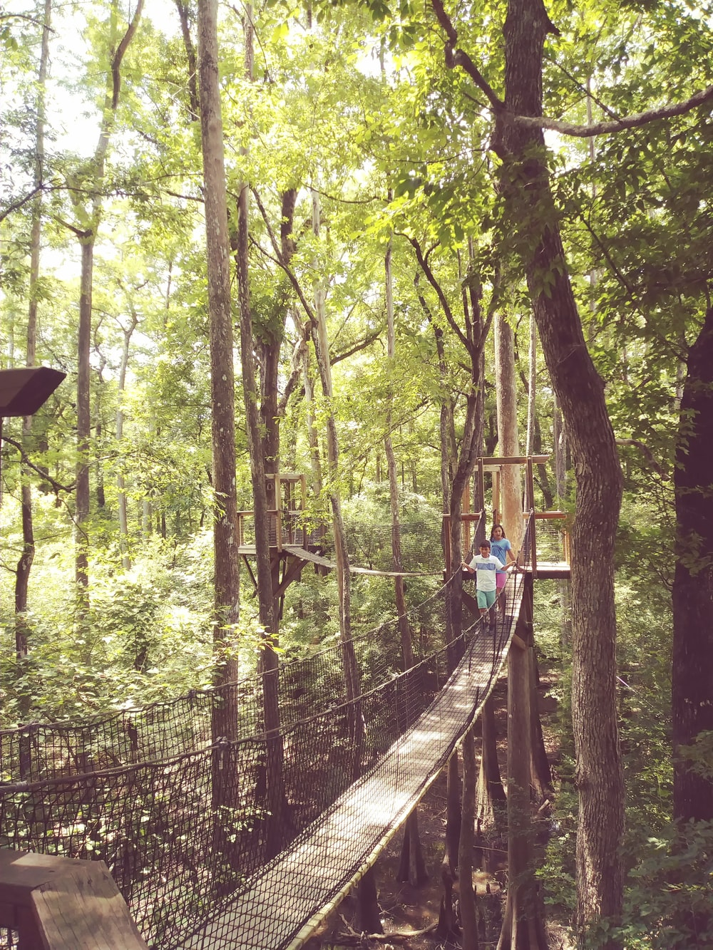 two person crossing on hanging bridge