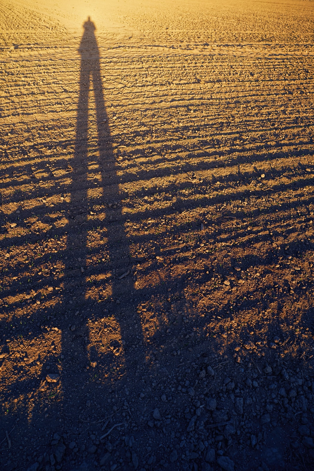 person standing on dirt field during day
