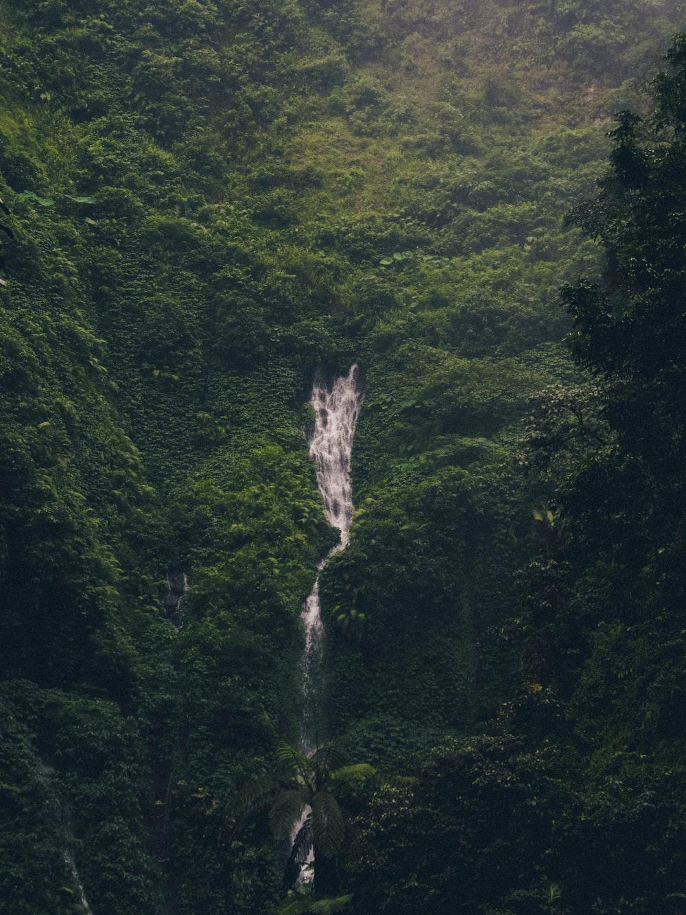 birds eye photography of waterfall