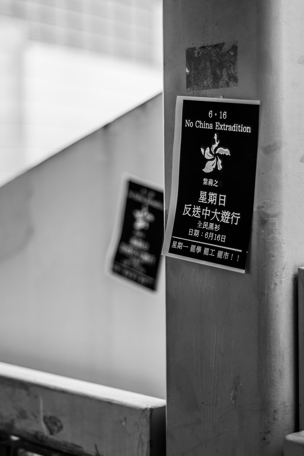 grayscale photography of No China Extradition sticker