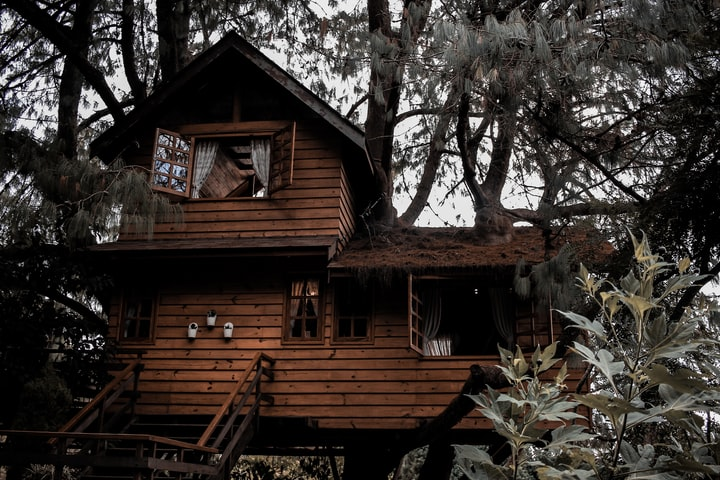 INCIDENT AT THE TREEHOUSE