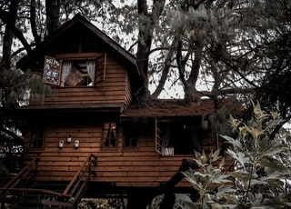 brown wooden tree house during daytime