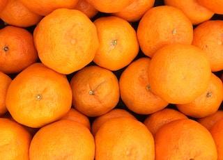 closeup photography of citrus fruits
