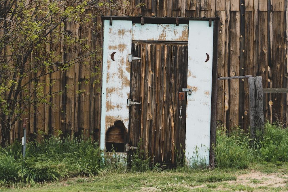 closed brown wooden door near trees