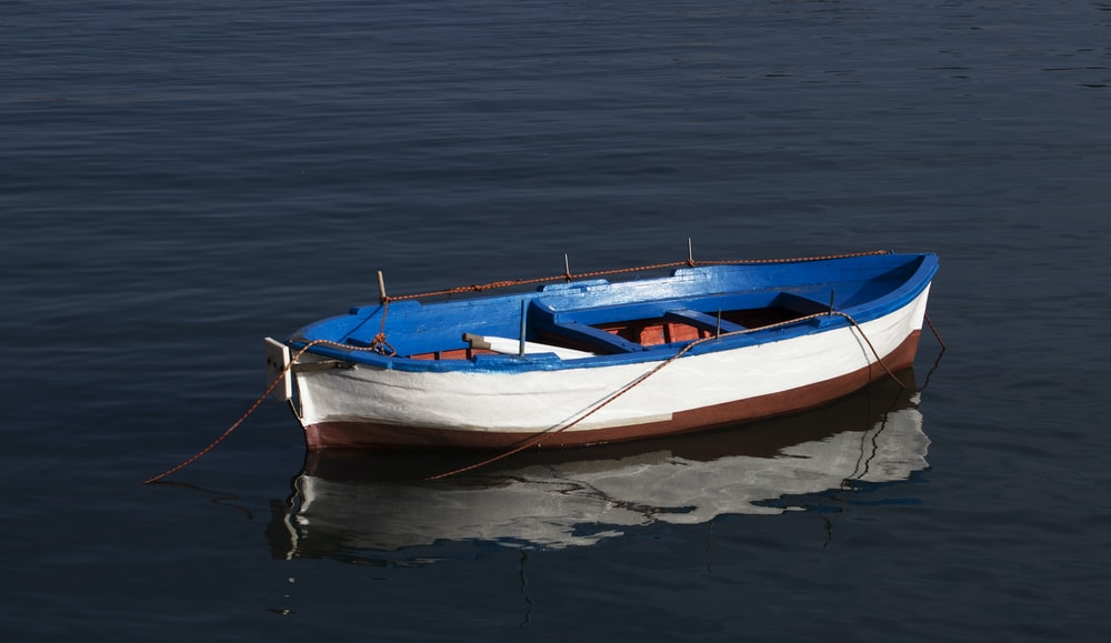 white and blue wooden canoe on body of water