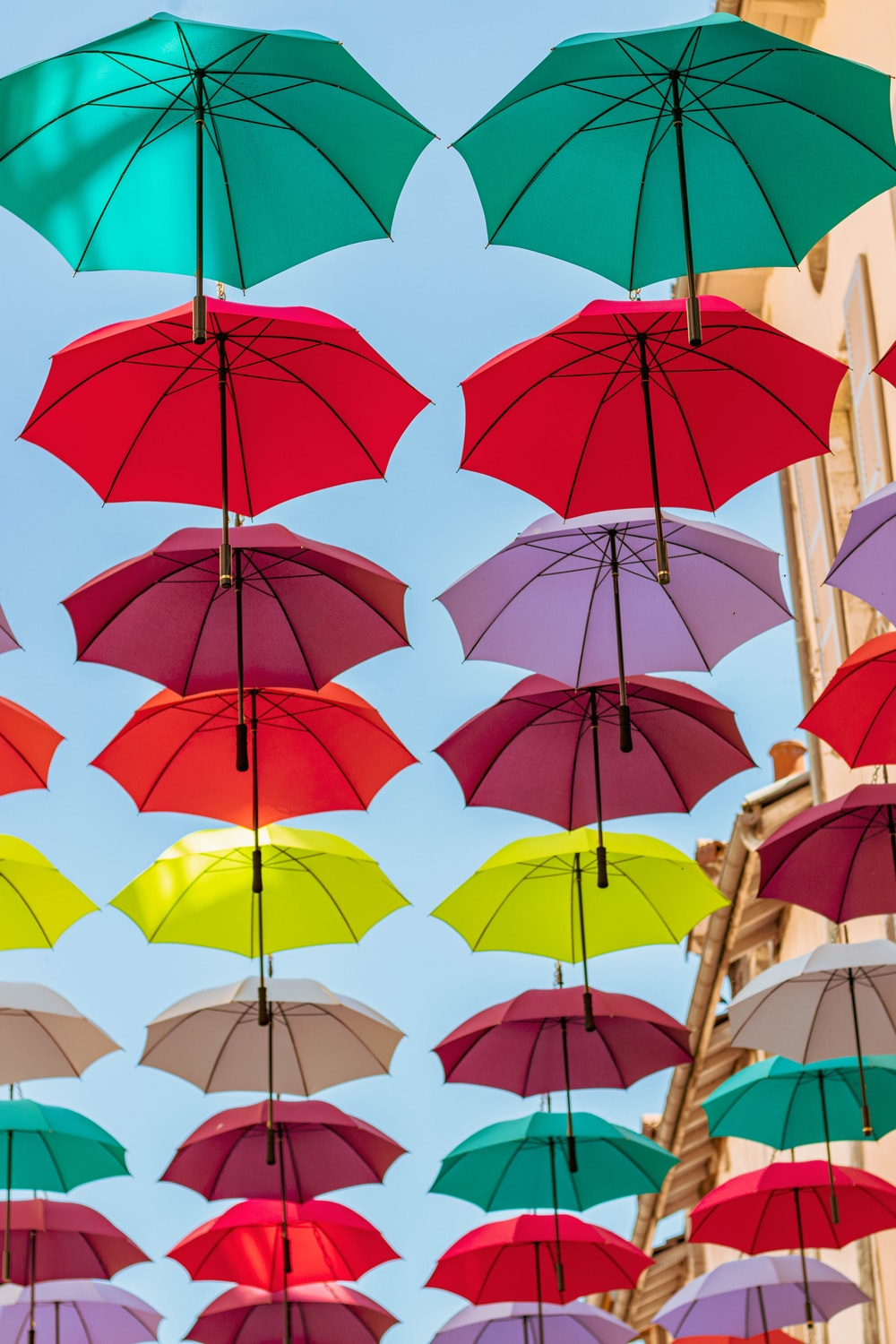 assorted-color umbrellas