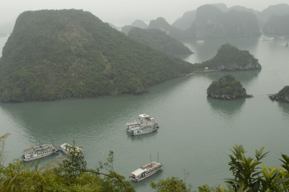 touring boats beside islets